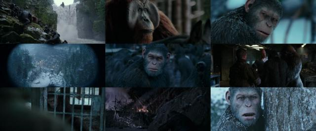 War.For.The.Planet.Of.The.Apes.2017.720p.BluRay.x264-BLOW