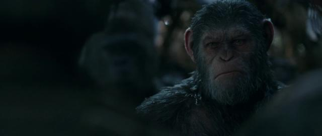War.for.the.Planet.of.the.Apes.2017.WEB-DL.x264-FGT