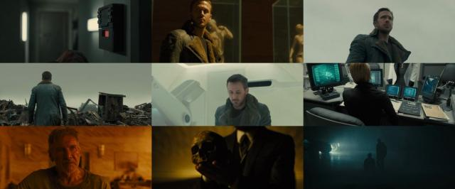 Blade.Runner.2049.2017.BDRip.x264-SPARKS
