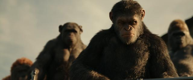 War.for.the.Planet.of.the.Apes.2017.1080p.AMZN.WEBRip.DDP5.1.x264-NTb