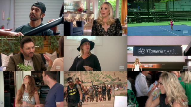 Housewives of orange county season 9 download torrent pirate bay